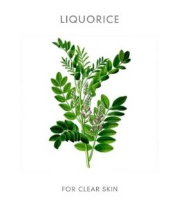 Abloom Skincare - Organic Miracle Treatment Oil5